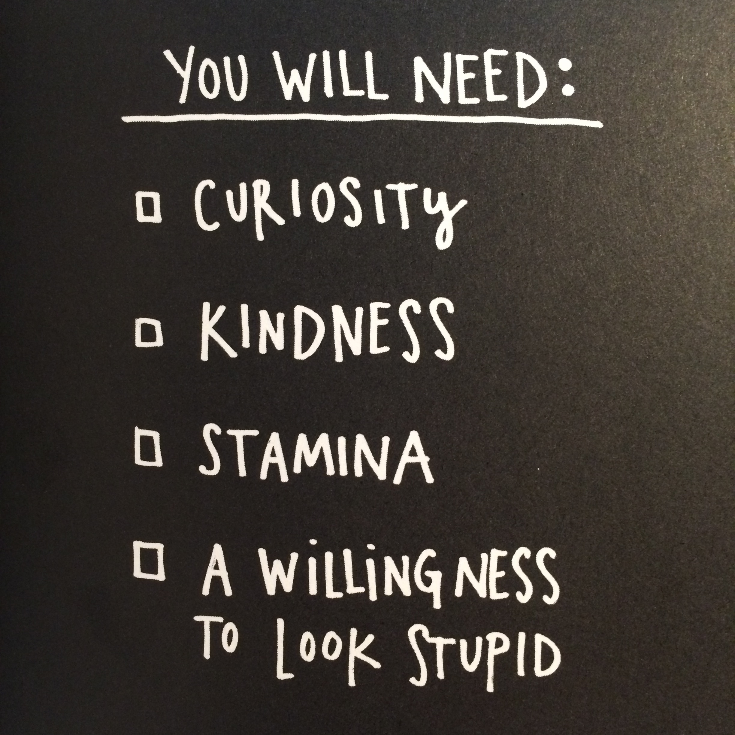 Mr. Kleon's checklist. As a seasoned cat-schlepper, I have these by the heap.