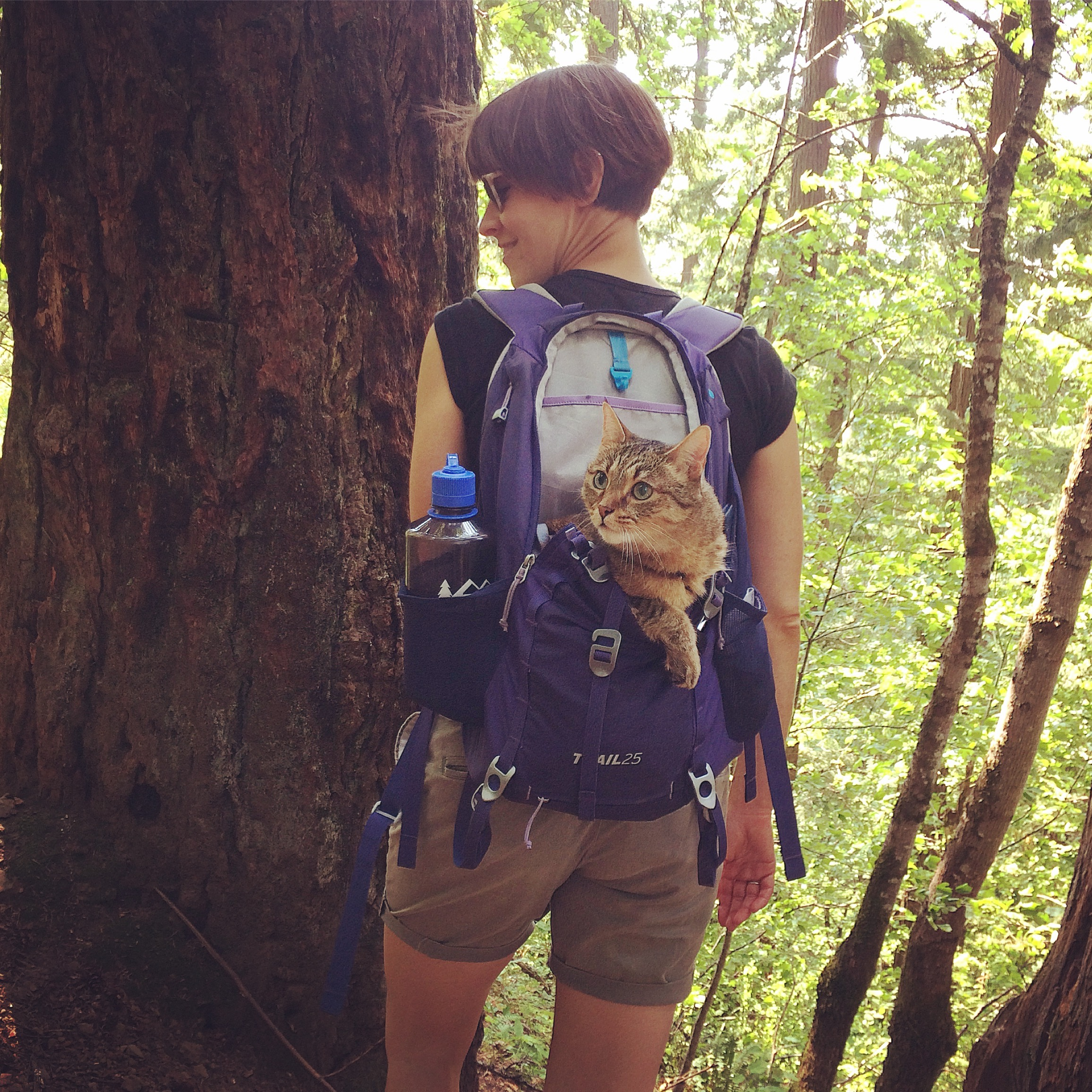 Summer hiking fun in Oregon, 2017. Best face ever.