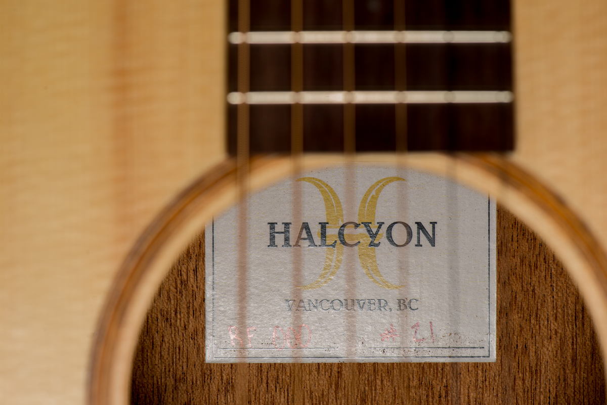 halcyonrf00021-3596.jpg