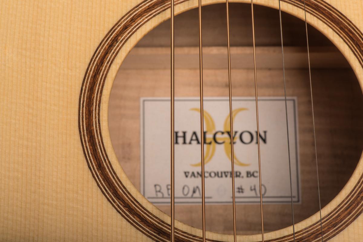 HalcyonOM40-7206.jpg