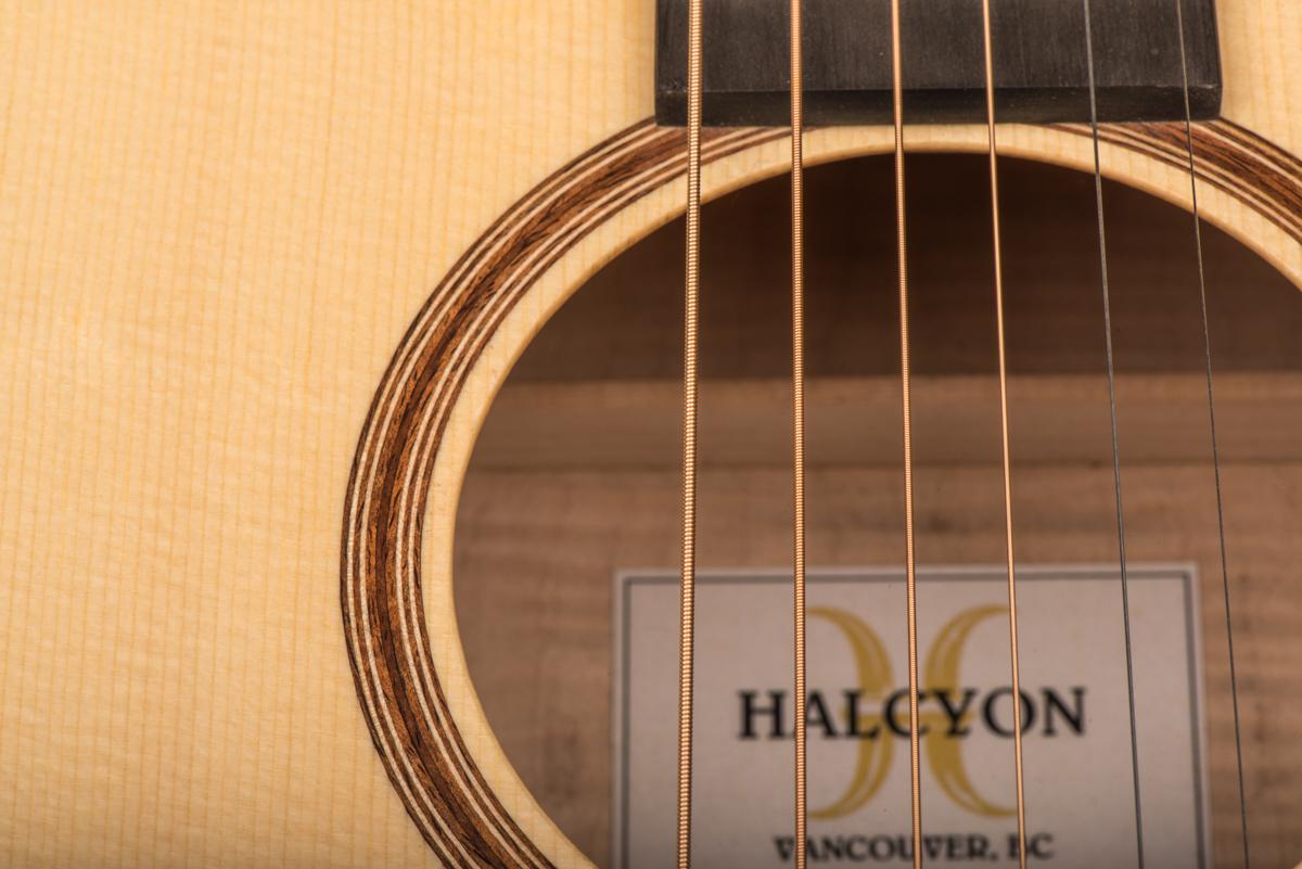 HalcyonOM40-7209.jpg