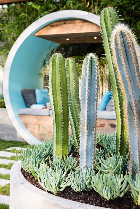 Alison Douglas Design