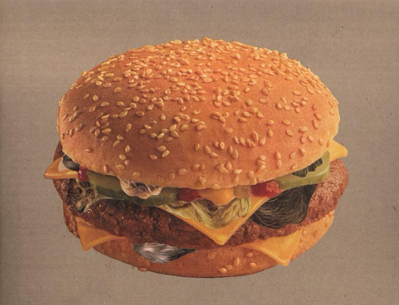 Furburger (Physical Collage - 2015_