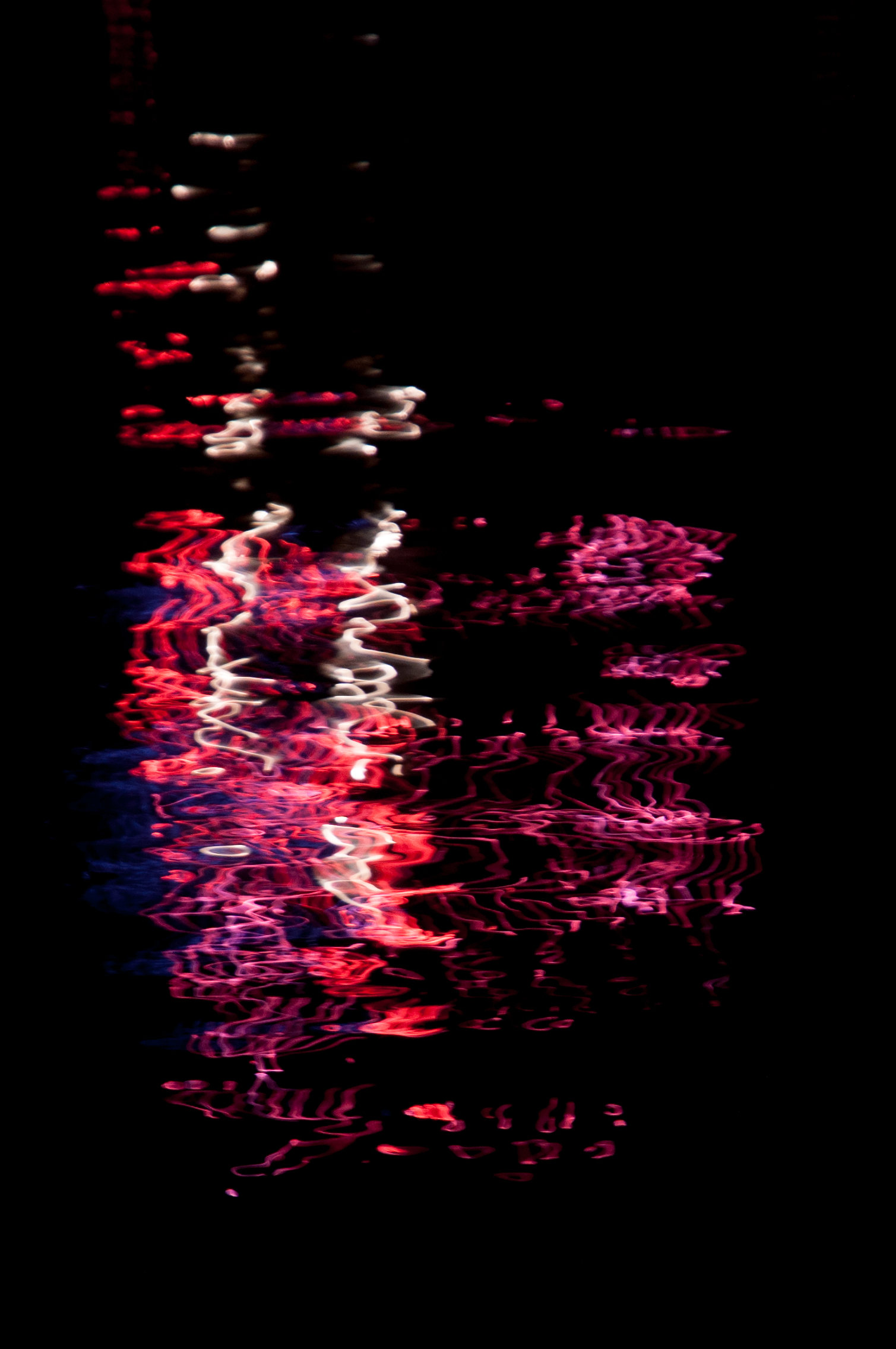 ReflectionsFireworks_1380.jpg