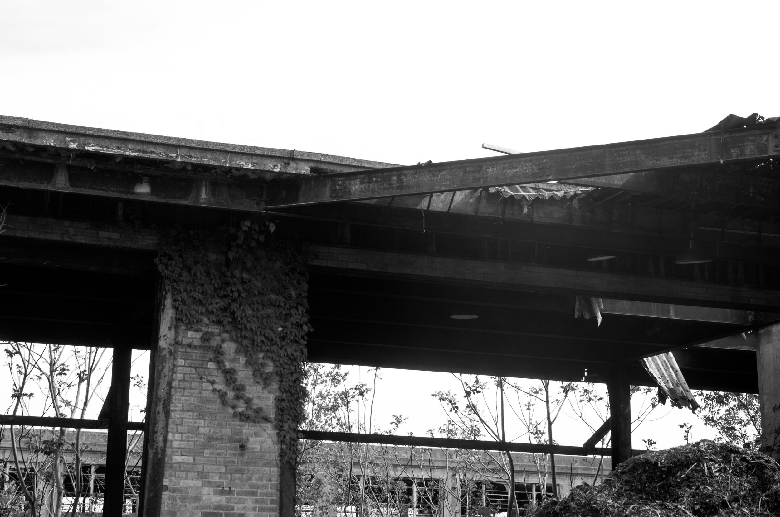 Buffalo_Decay-3031.jpg