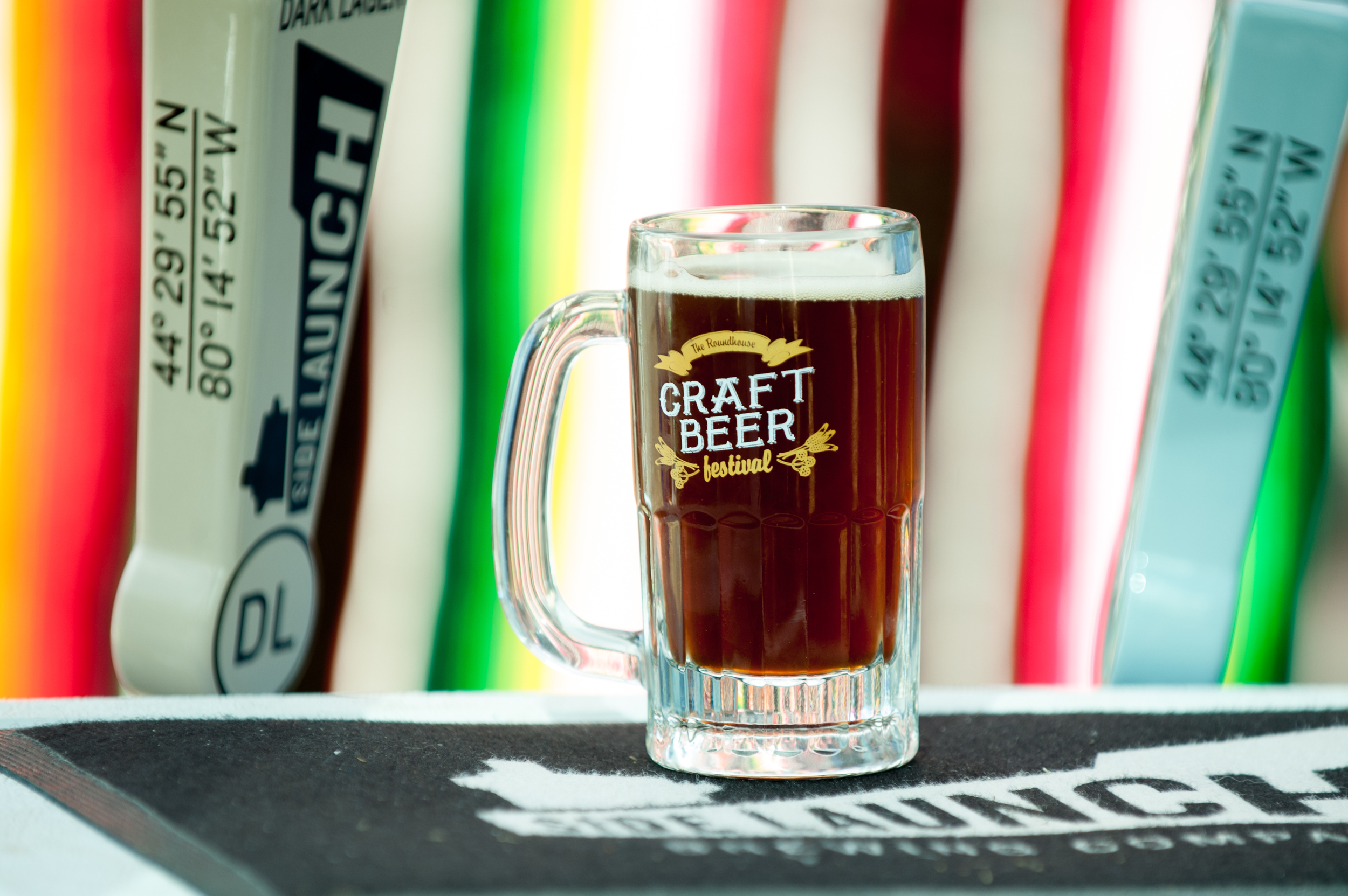 Craft Beer Festival-7278.jpg