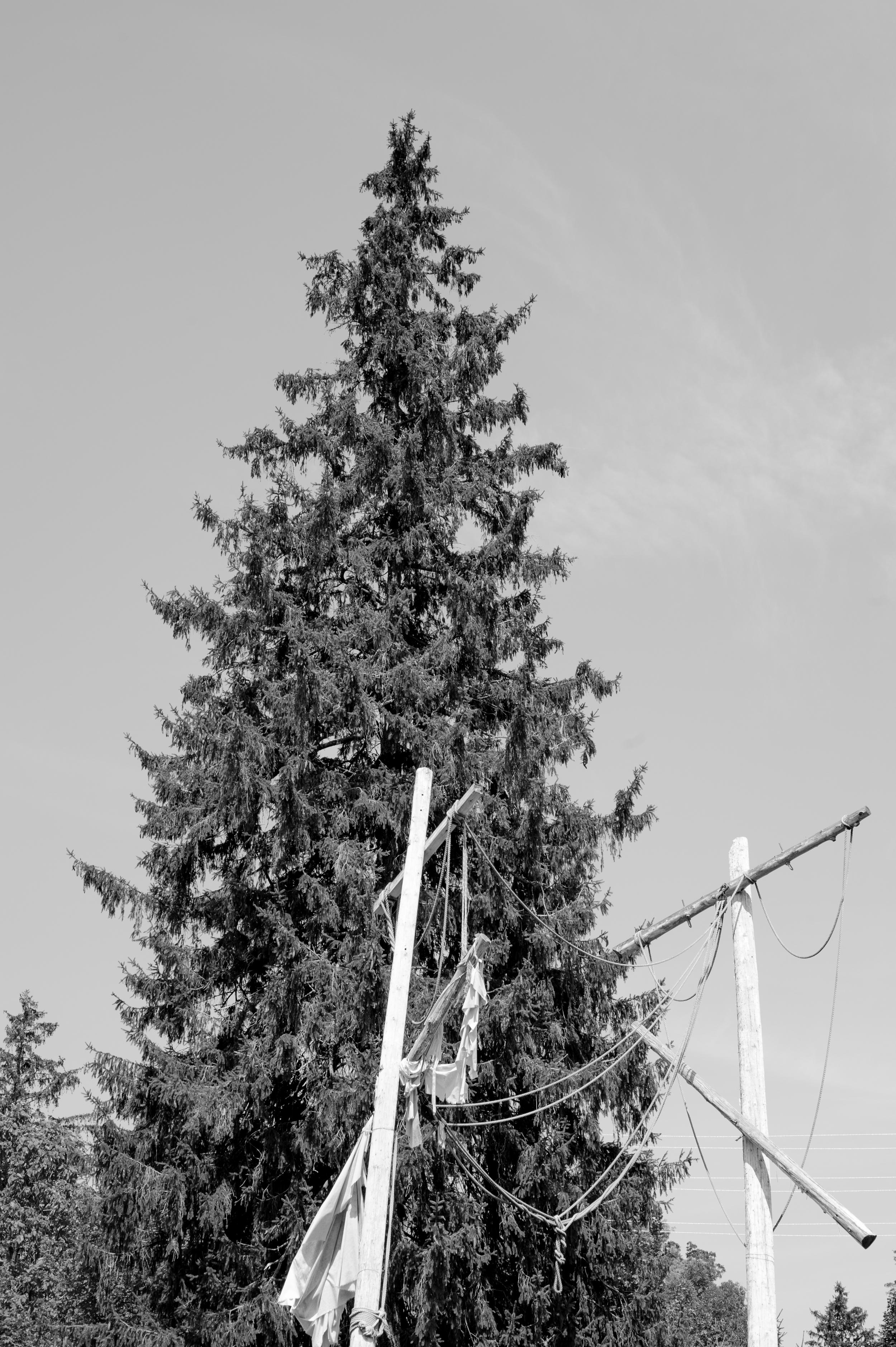 Elora-7412.jpg
