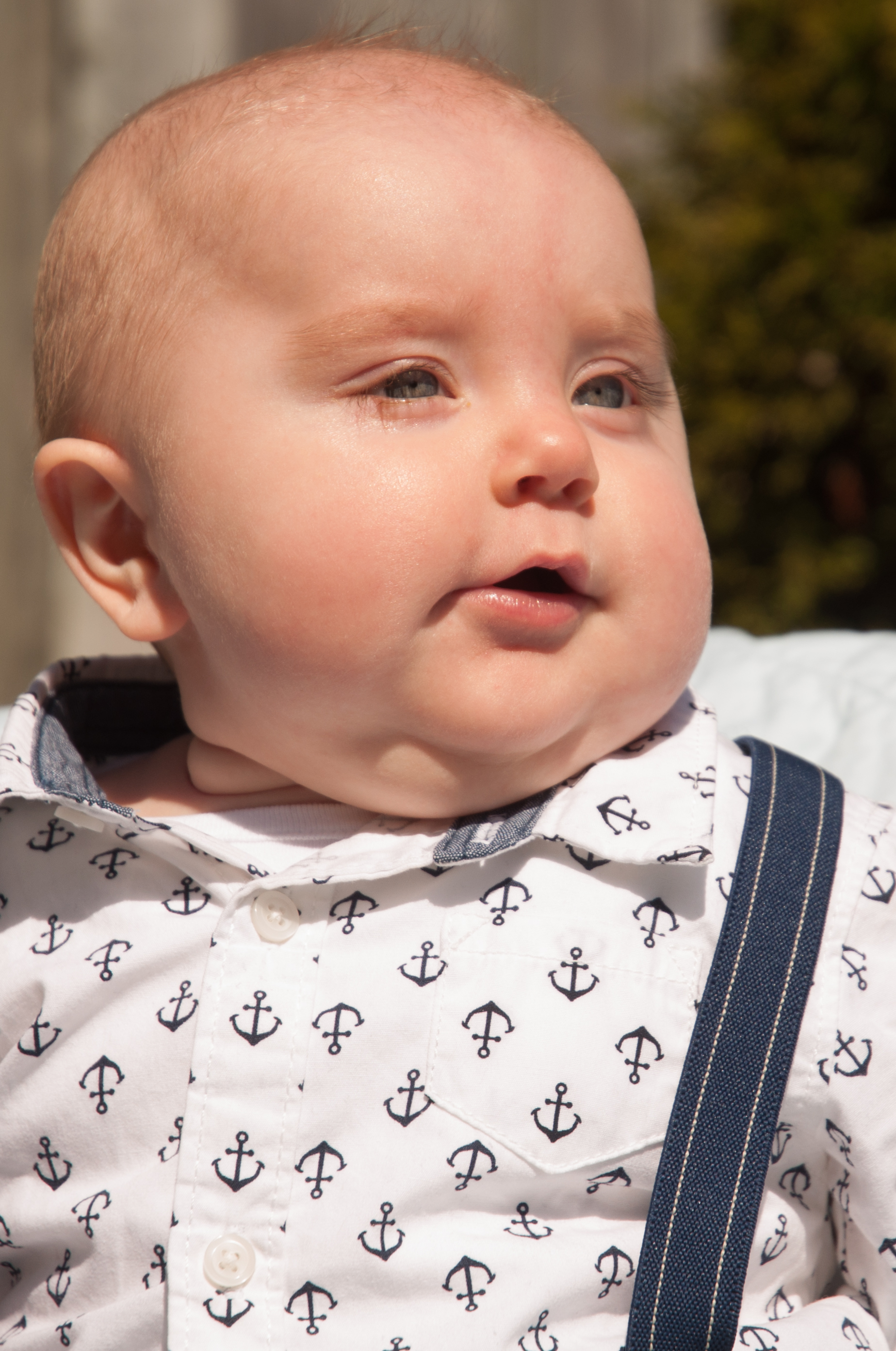 Reed At Six Months-8337.jpg