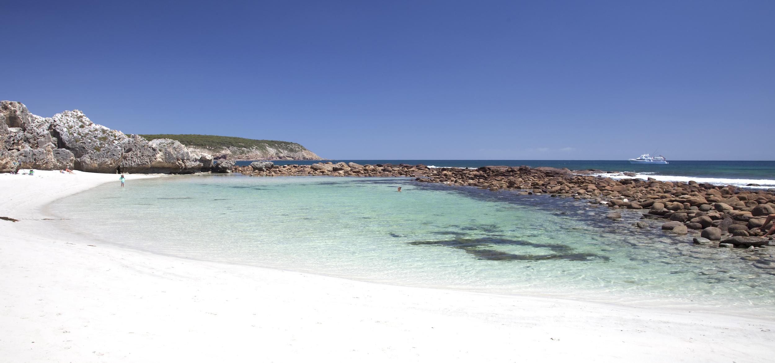 「袋鼠島 Stokes Bay 海灘」的圖片搜尋結果