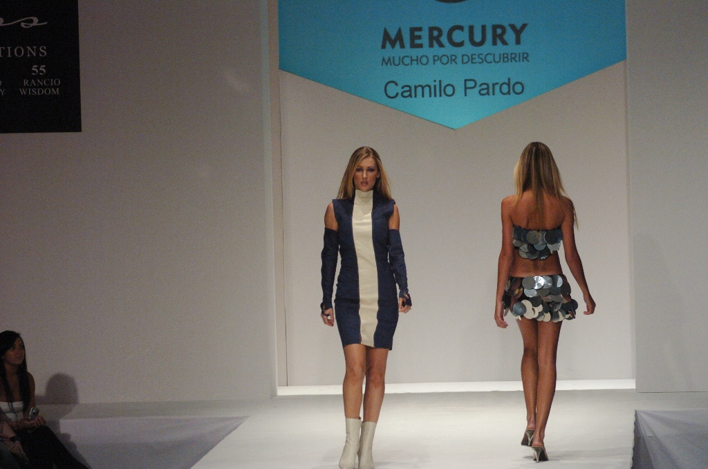 Camilo Pardo designs2.JPG