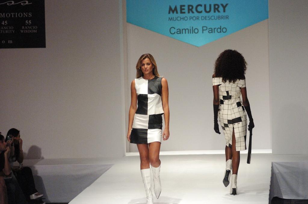 Camilo Pardo designs5.JPG
