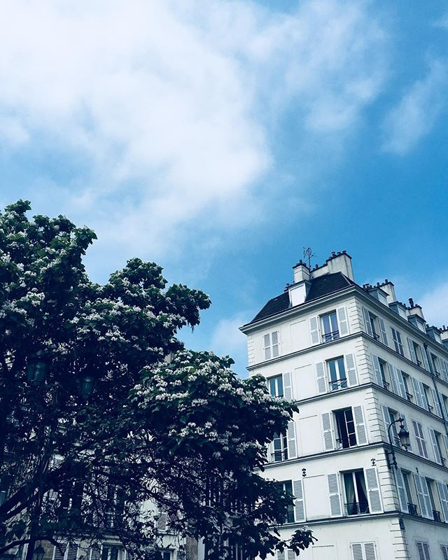 A late start in Paris is still a good start ! 💙 . . . #daysinfrance #paris #lookup #europe #travel #europeansummer #makeupartist #daysoff #sundayfunday