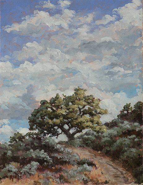 Autumn Oak & Tumbling Sky