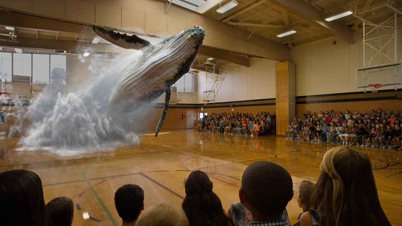 Whale Augmented Reality Magic Leap