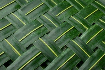 7078344-background-green-woven-palm-leaves-mat.jpg