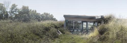 LIONarchitecture+Badseed+-+2014+0913_lr.jpg
