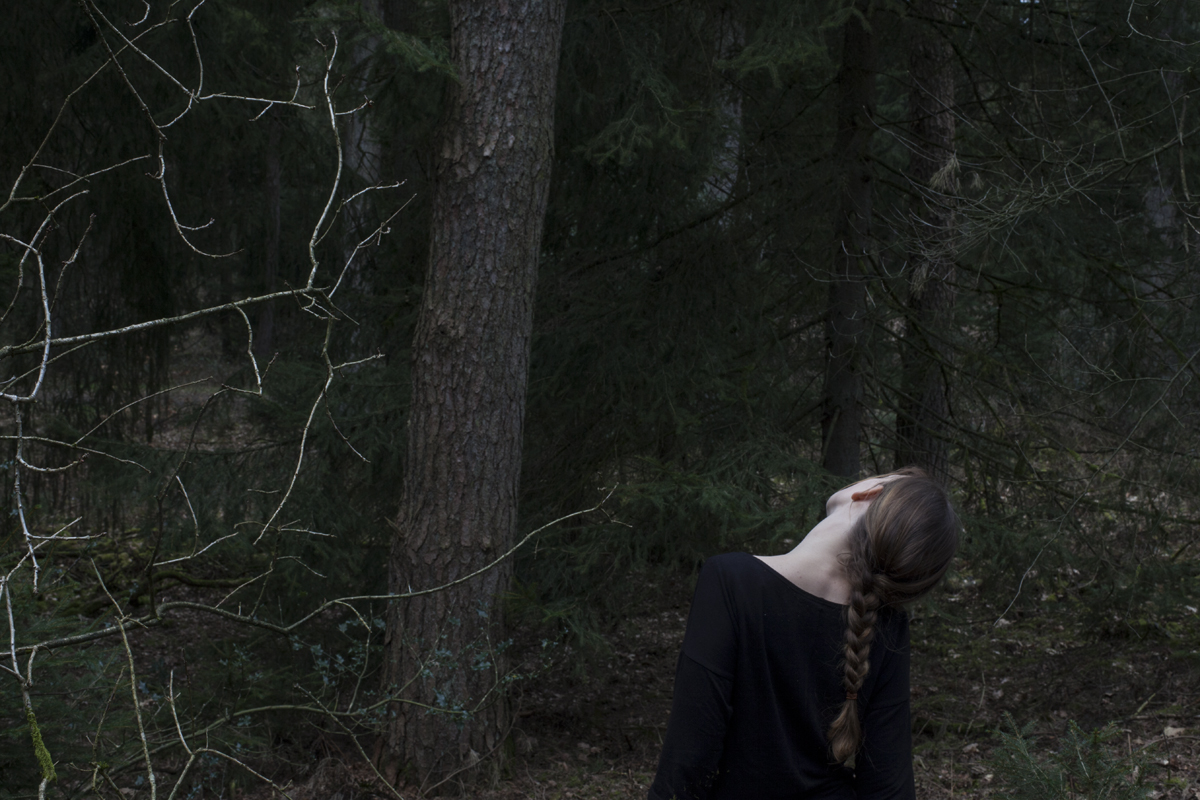 Bied de wolf je nek aan, om te laten zien dat je geen bedreiging bent.   Offer the wolf your neck, to show him you are nothreat.
