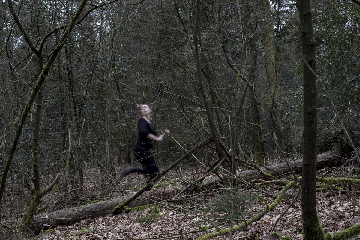 REN NOOIT WEG! Wolven rennen sneller.   NEVER EVER RUN!  Wolves run faster.