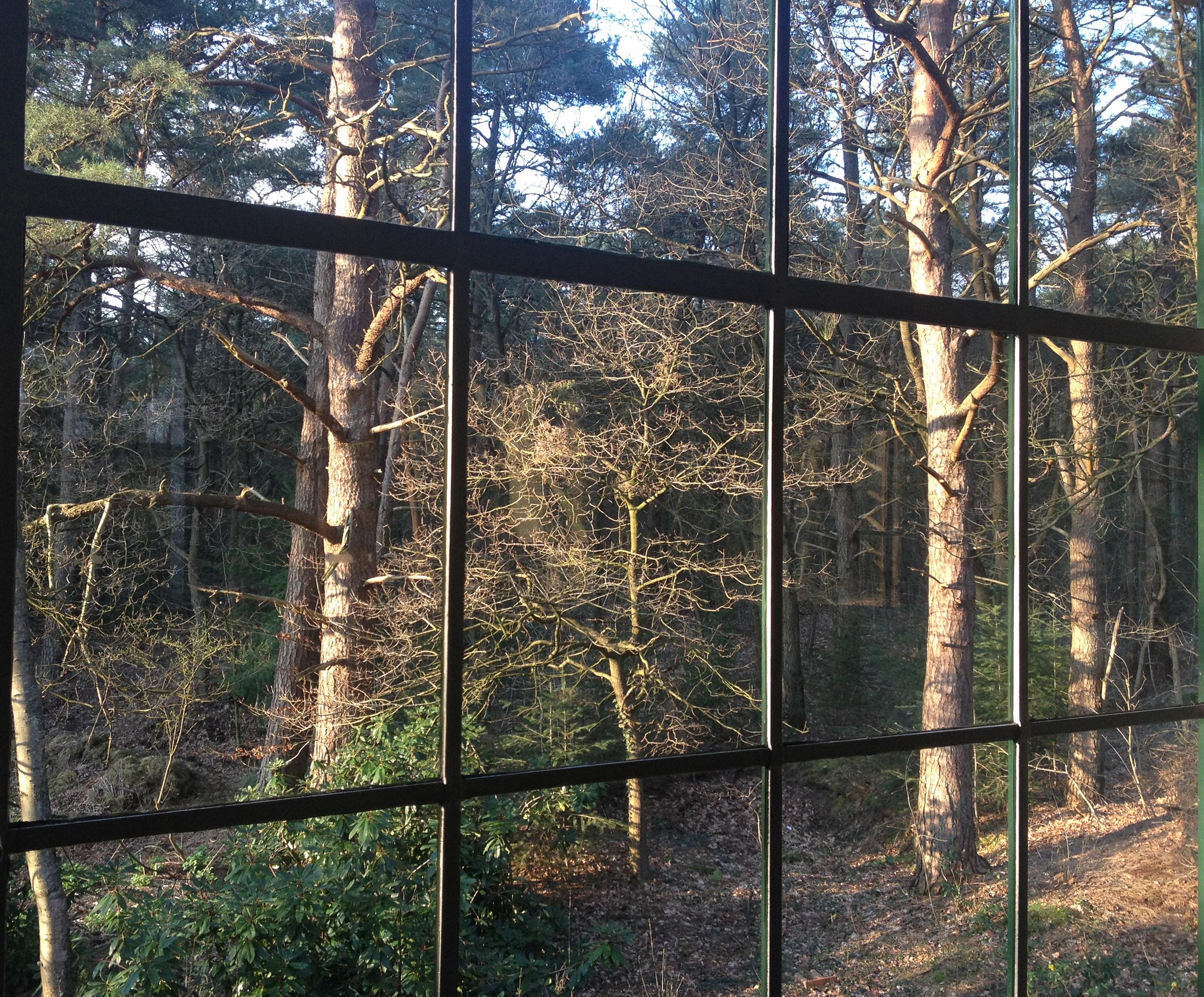 Uitzicht uit een van de ramen van de residentie