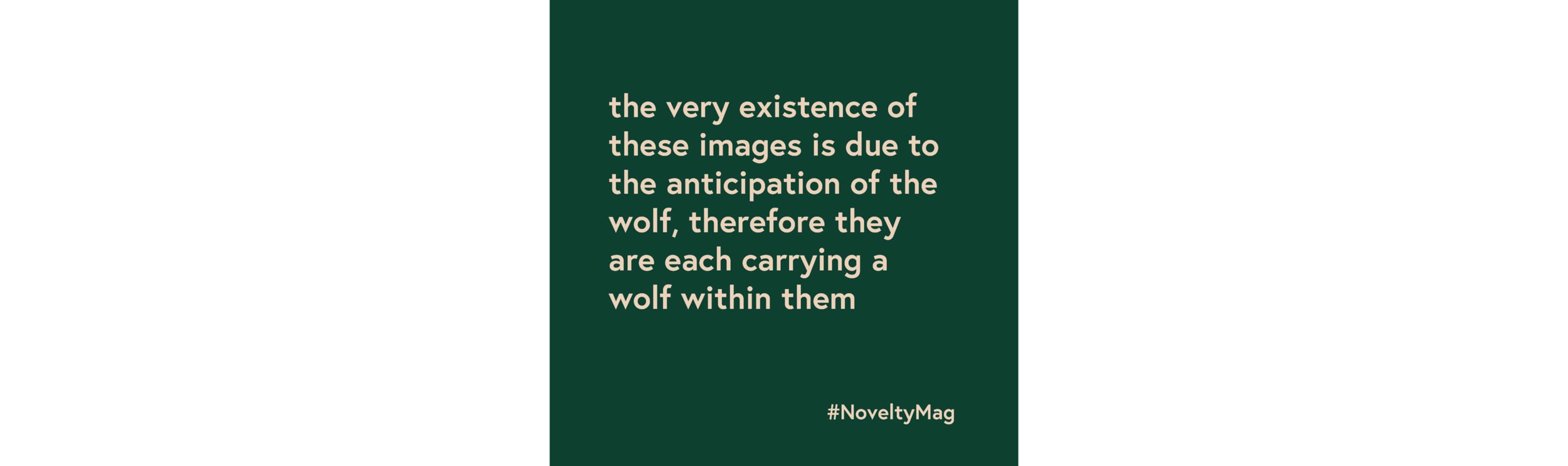 wolfnoveltysanne.png