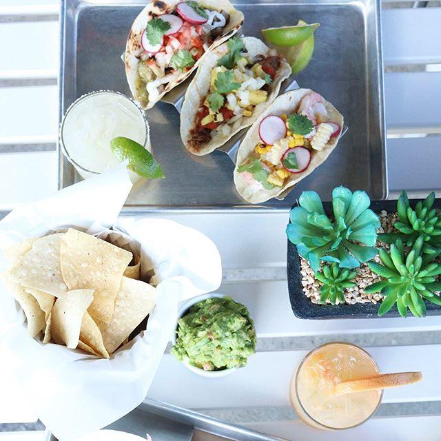 Taco Tuesday Challenge! How many 🌮 can you eat?! $3.50 mix and match tacos + $6.50 Mavericks Margaritas - all day long! Don't miss it!  #maverickscantina #tacotuesday #johnscreek
