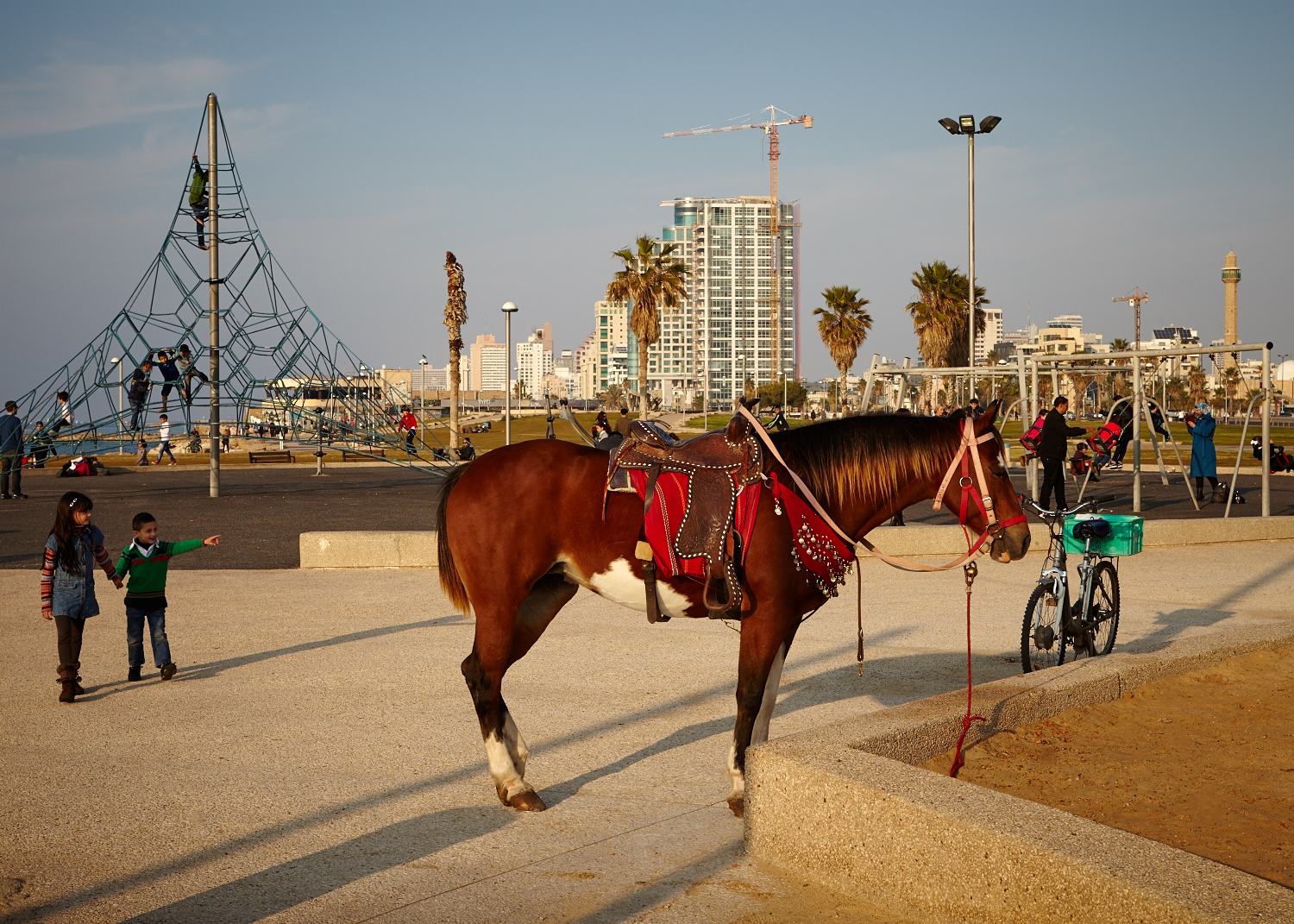20140103_Honey_&_Co_Tel_Aviv_0556_Patricia_Niven.jpg
