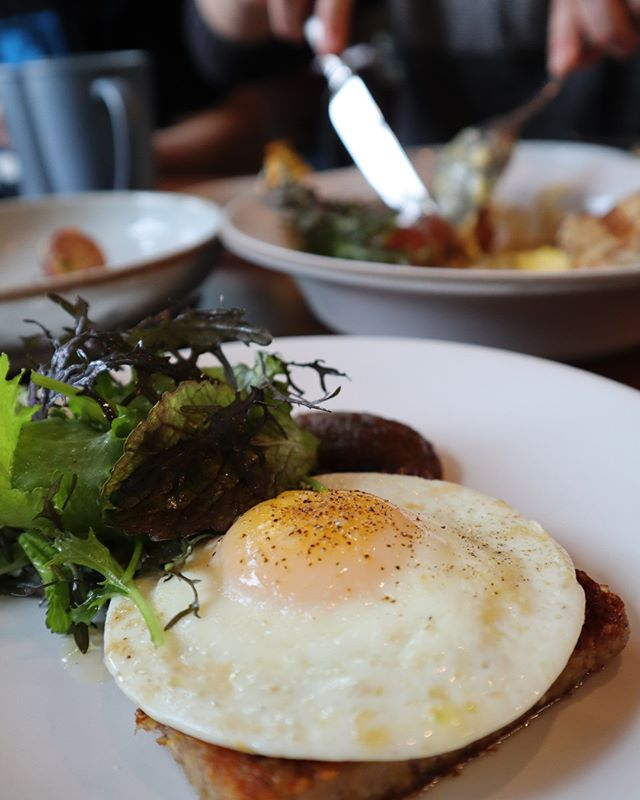 You may have already heard that we now offer Sunday Brunch, but did you know that the menu is available all Sunday long? Chef @reidshilling's new Scrapple at 7pm? Not a problem. Try this new brunch staple with autumn olive pork, a perfectly fried hen egg, fresh fall lettuces, and PA maple syrup. • 🍳Now Serving Brunch every Sunday from 11am-8pm • #brunchDC #shillingcanningcompany #sourcedwithcare #madewithcare #dcchefs #dmvfoodie #dcdining