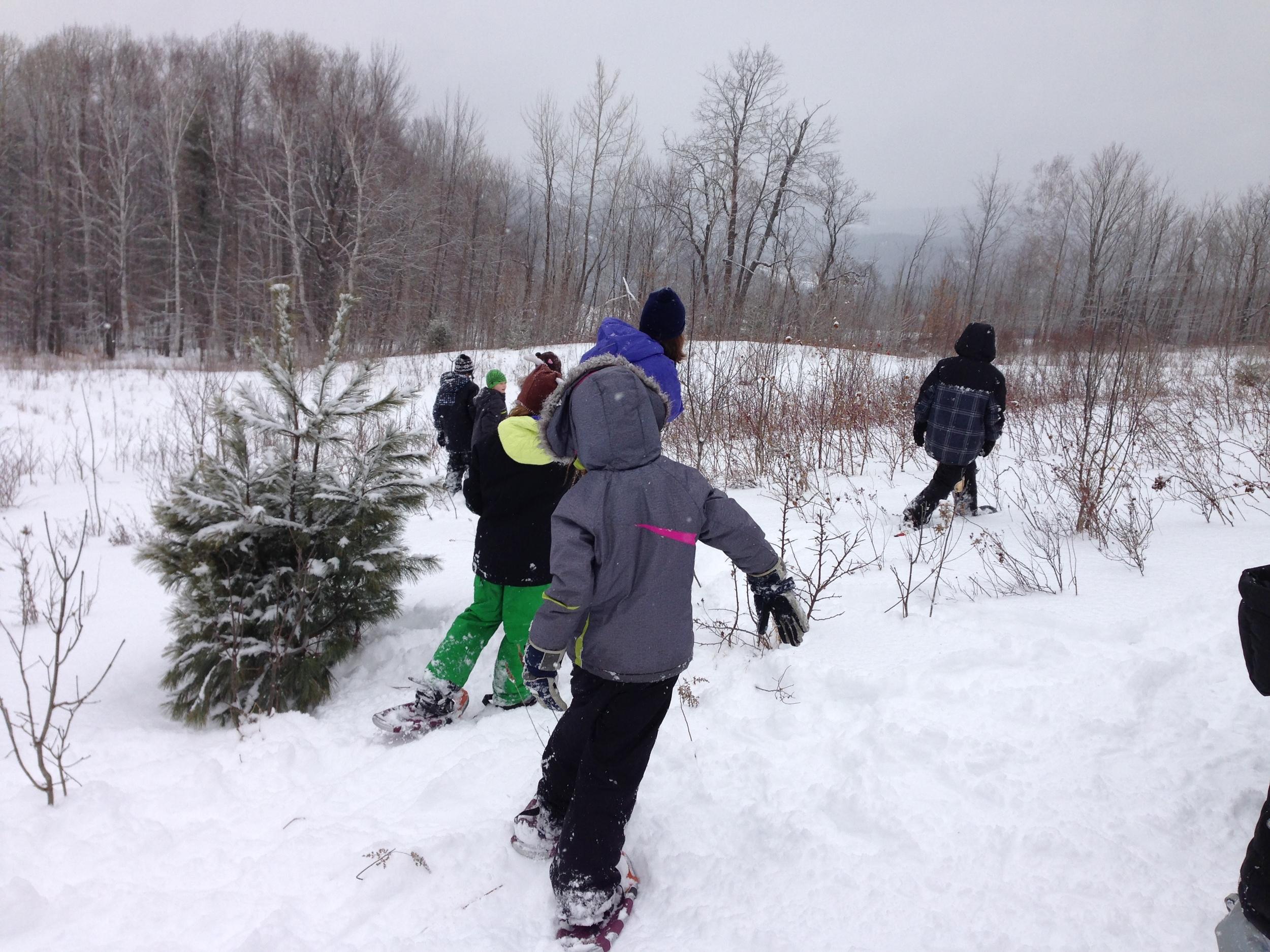 Winter Sports 2.JPG