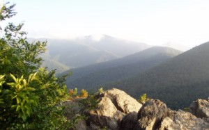 Montreat mountains.jpg
