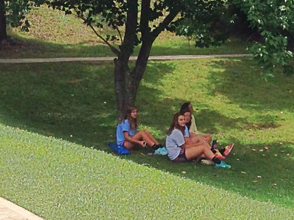 Montreat lawn.jpg