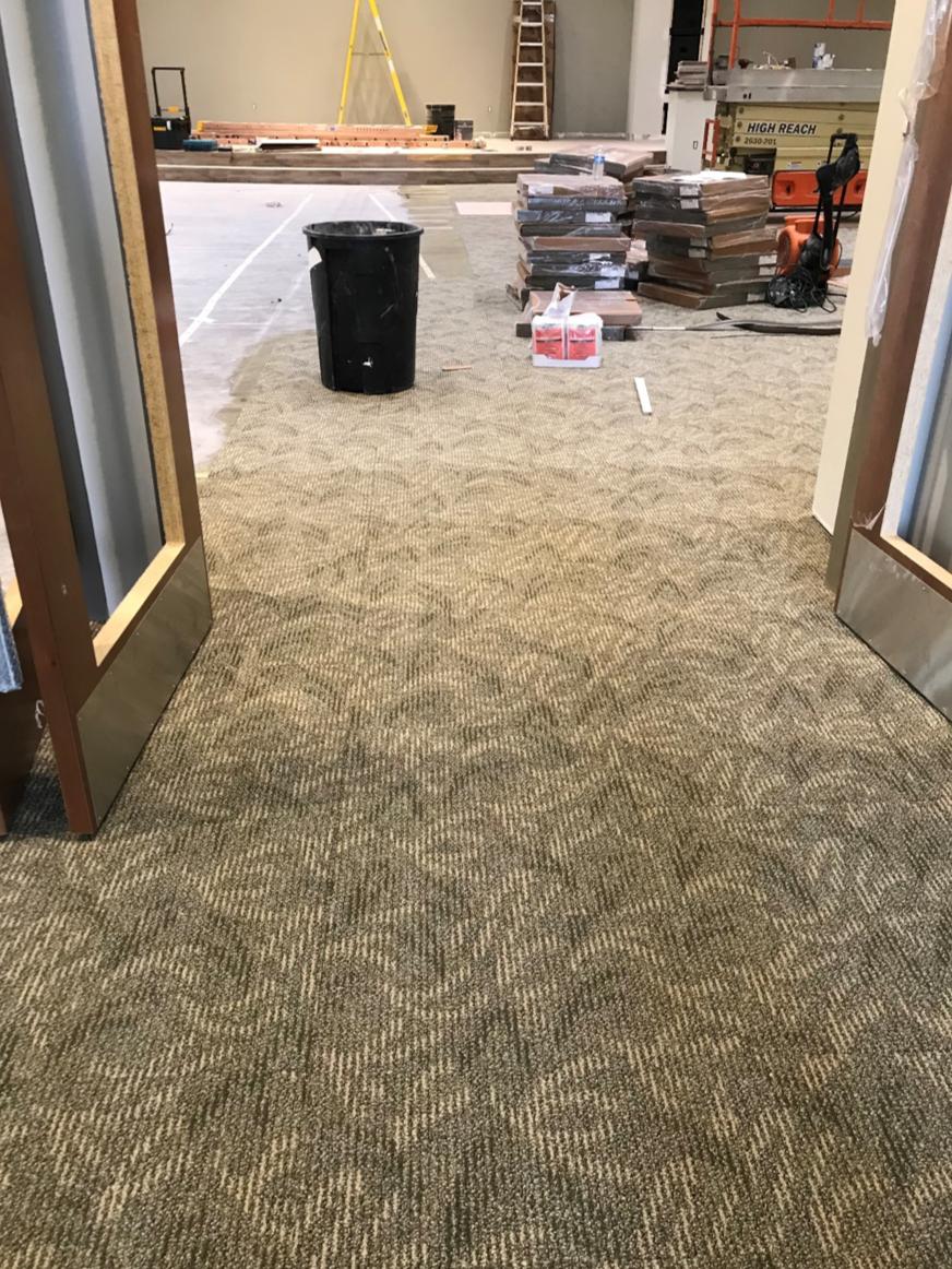 carpetgoingin.png