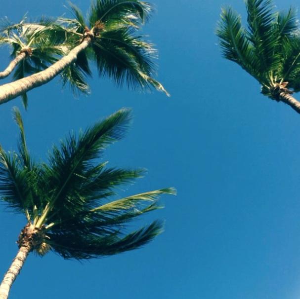 kenny sara hawaii hashtag comedy #groosh