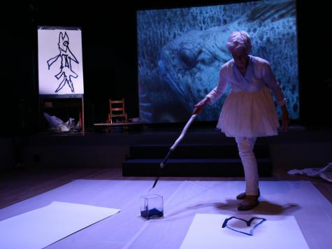 Video support for Joan Jonas performance at Texas Performing Arts