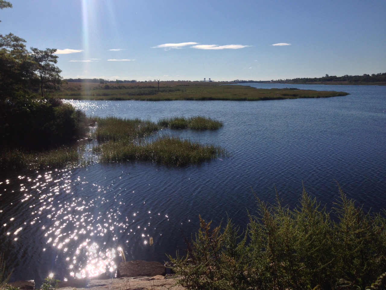 View from Salt Marsh Center 9-14-2015.JPG