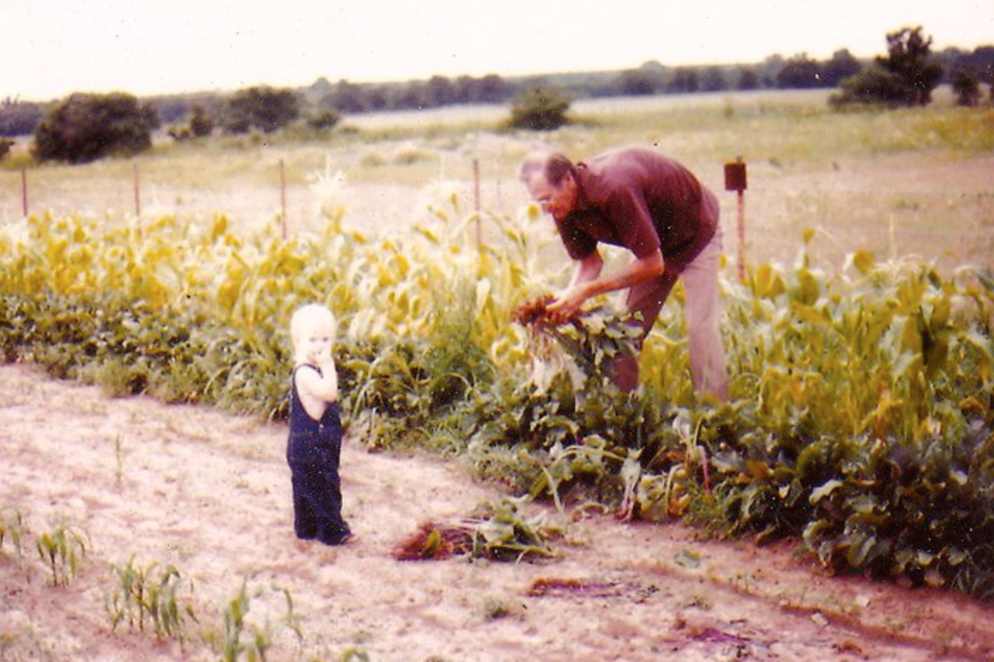 Digging up beets with her granddad in Mansfield, Texas.