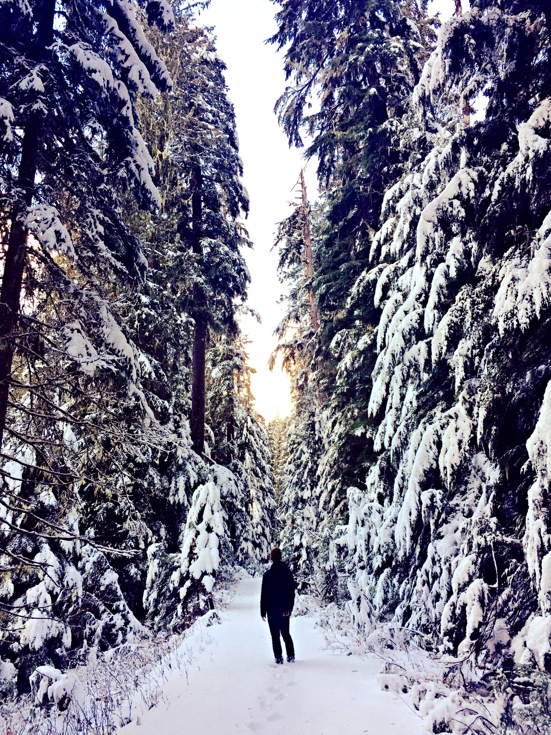 hiking-near-spokane-roosevelt-cedars