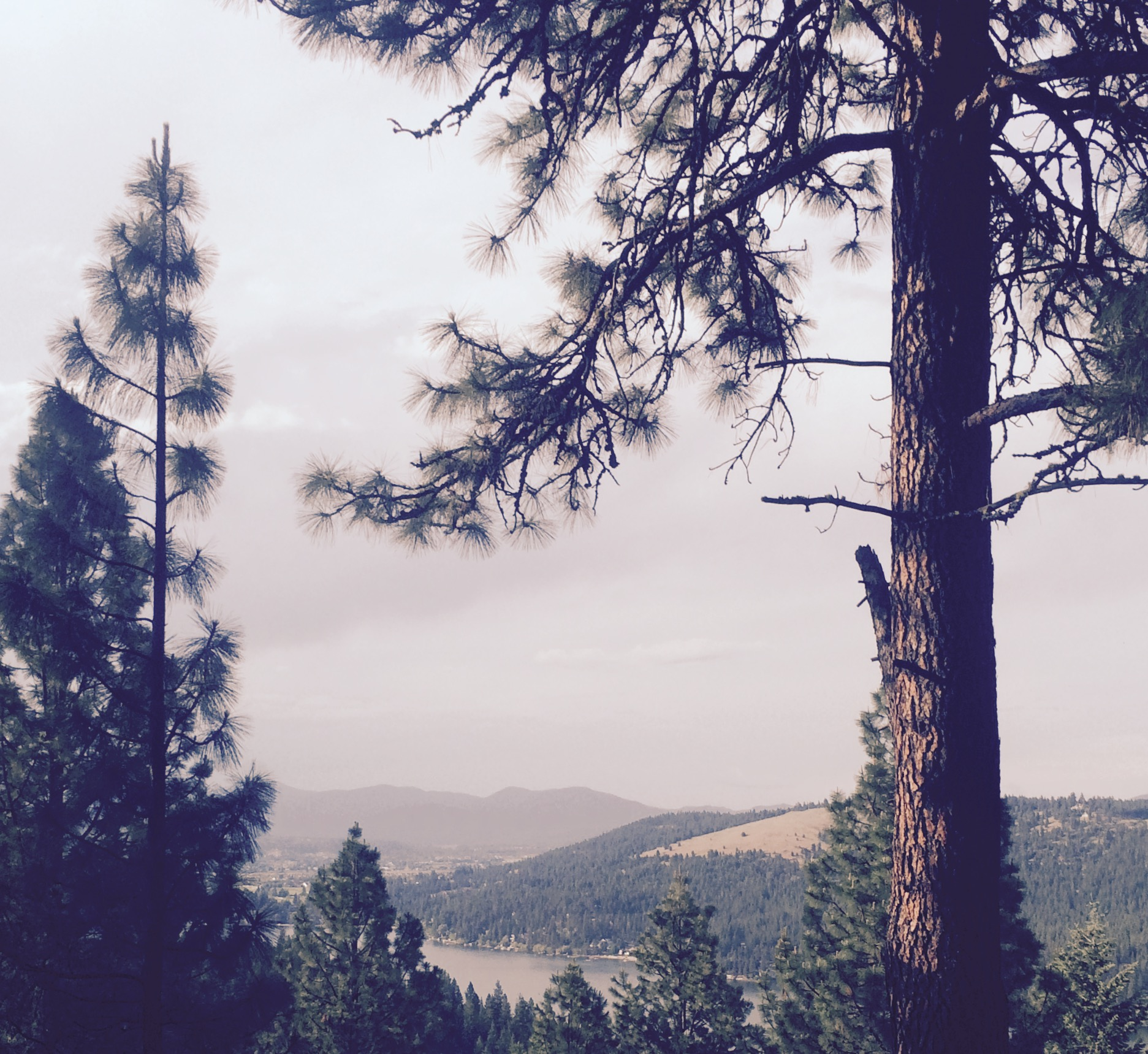 liberty-lake-hiking-spokane