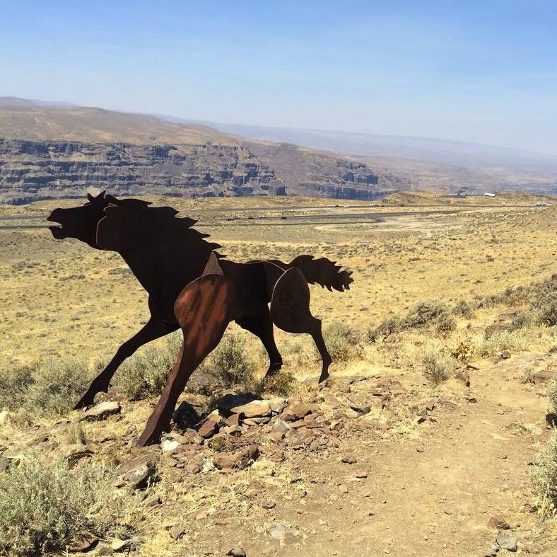 wild-horses-vantage-washington-columbia-river