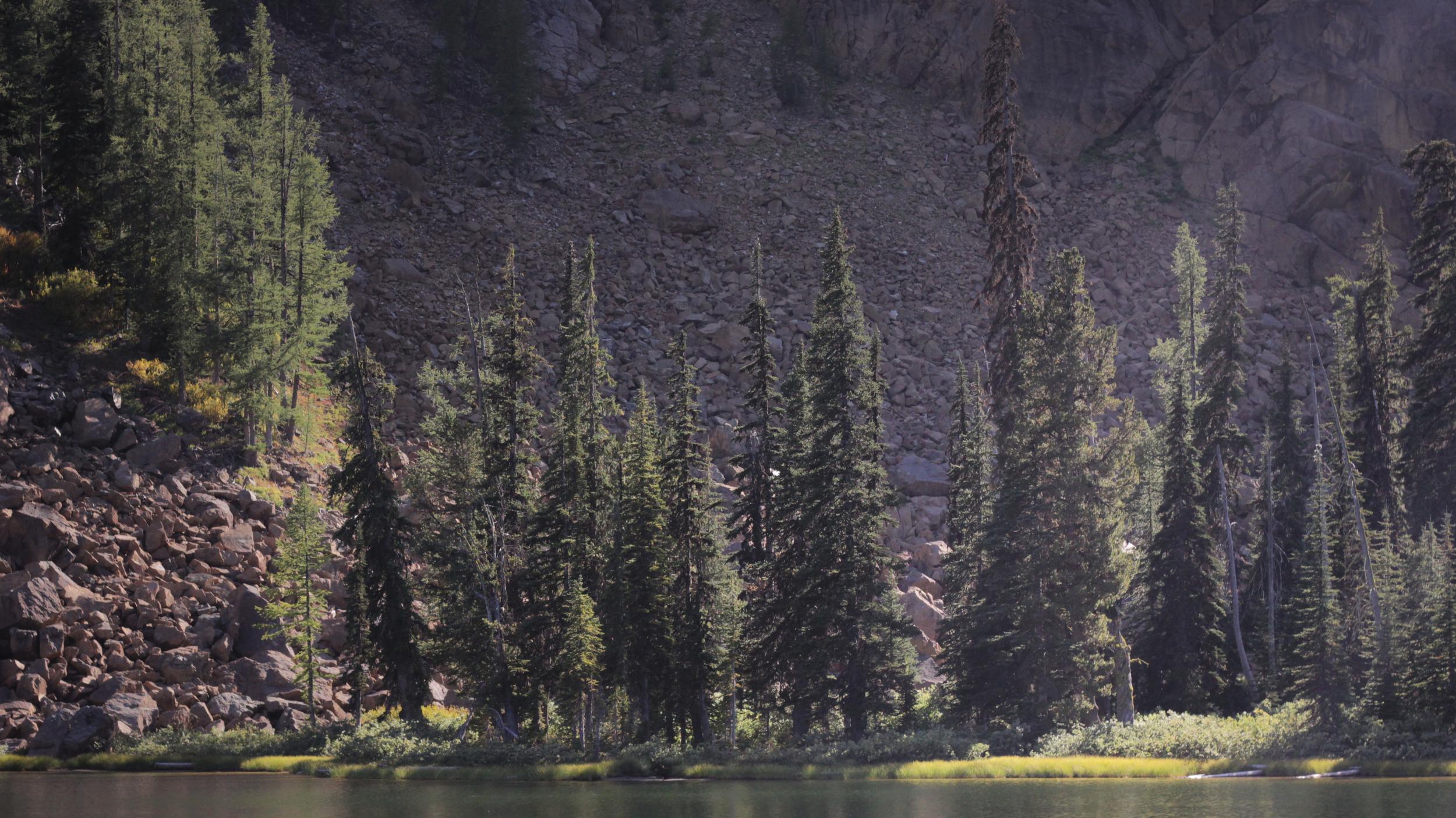 Lake-Caroline-Spotlight-Campbell.jpg