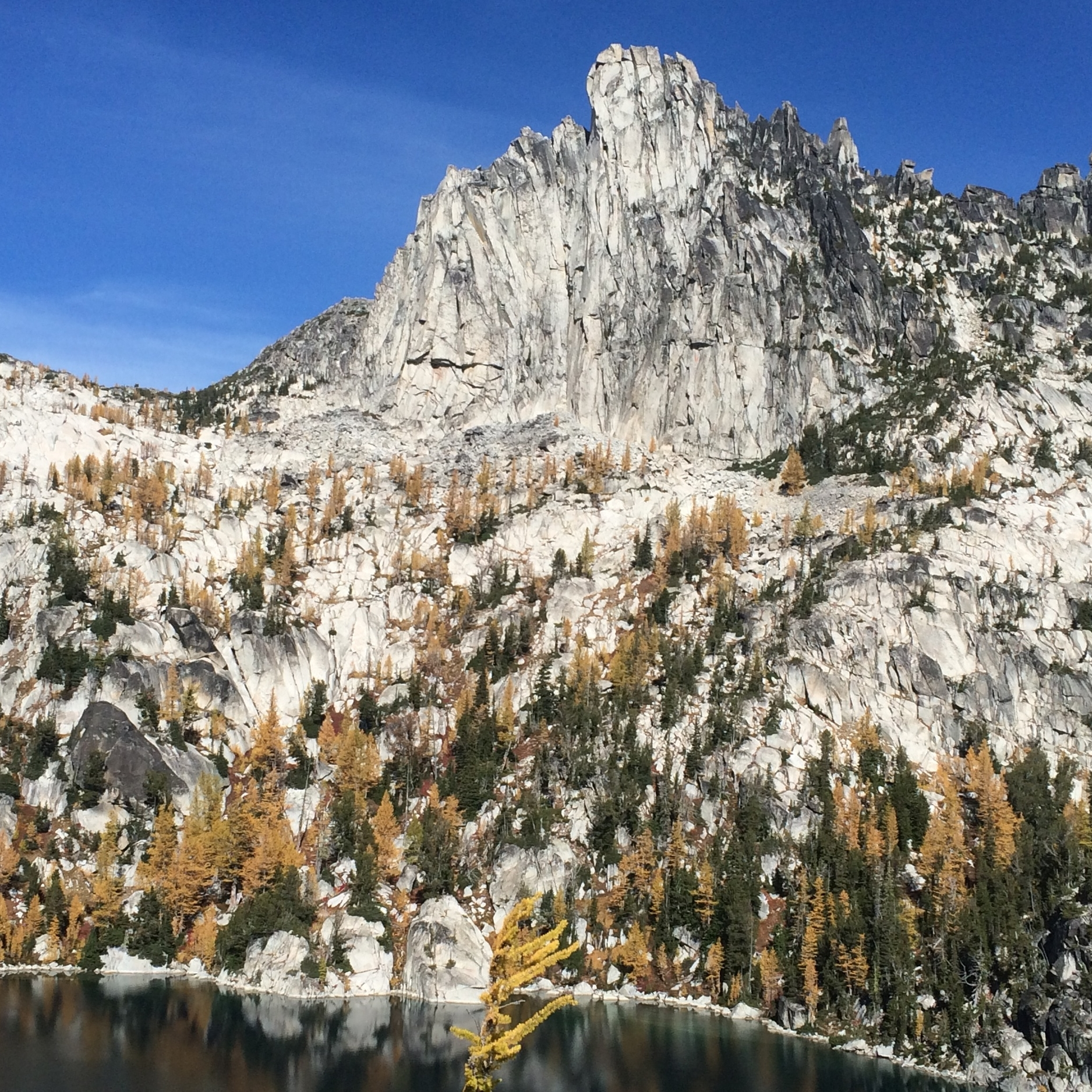 enchantments-field-and-compass