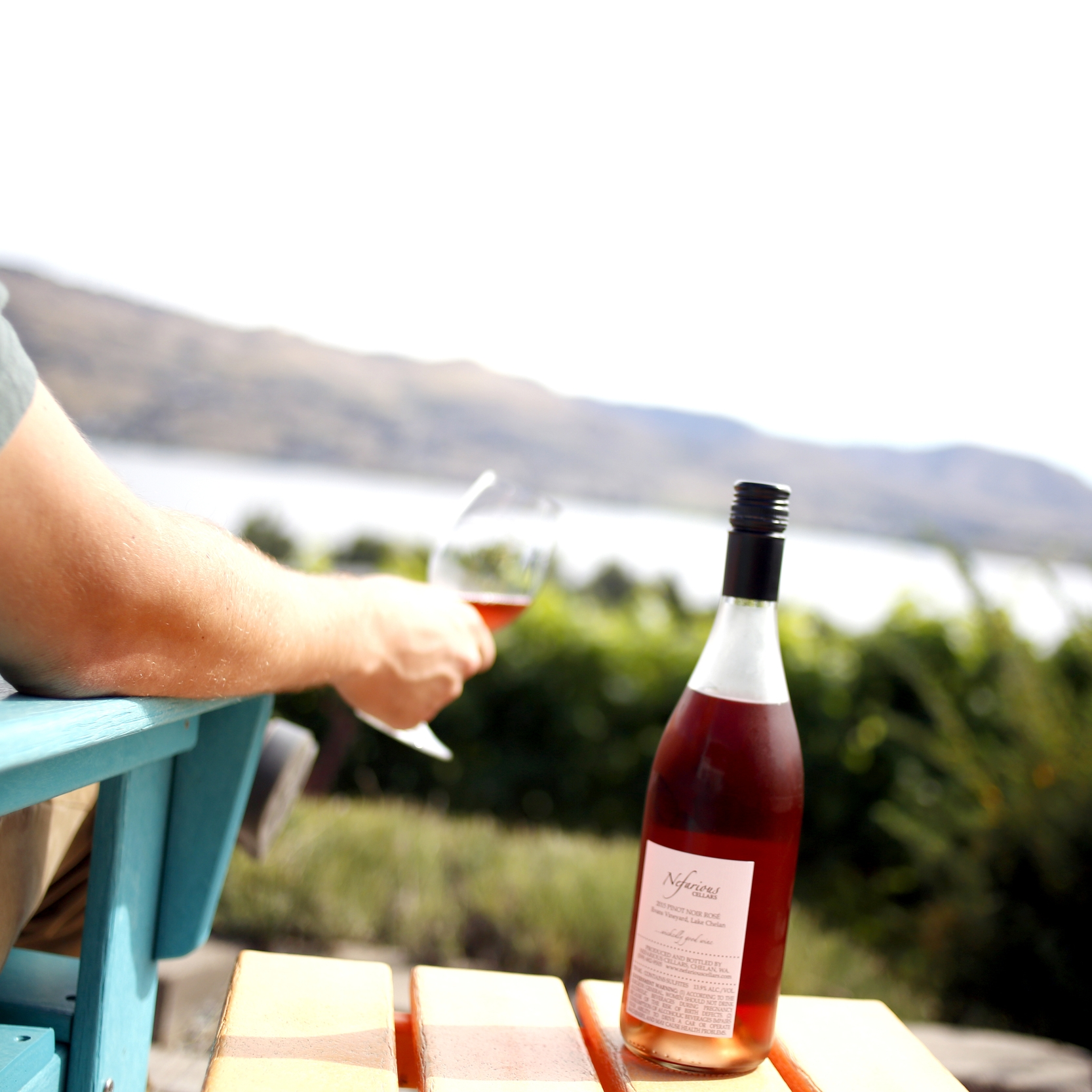 Wine in Hand.jpg