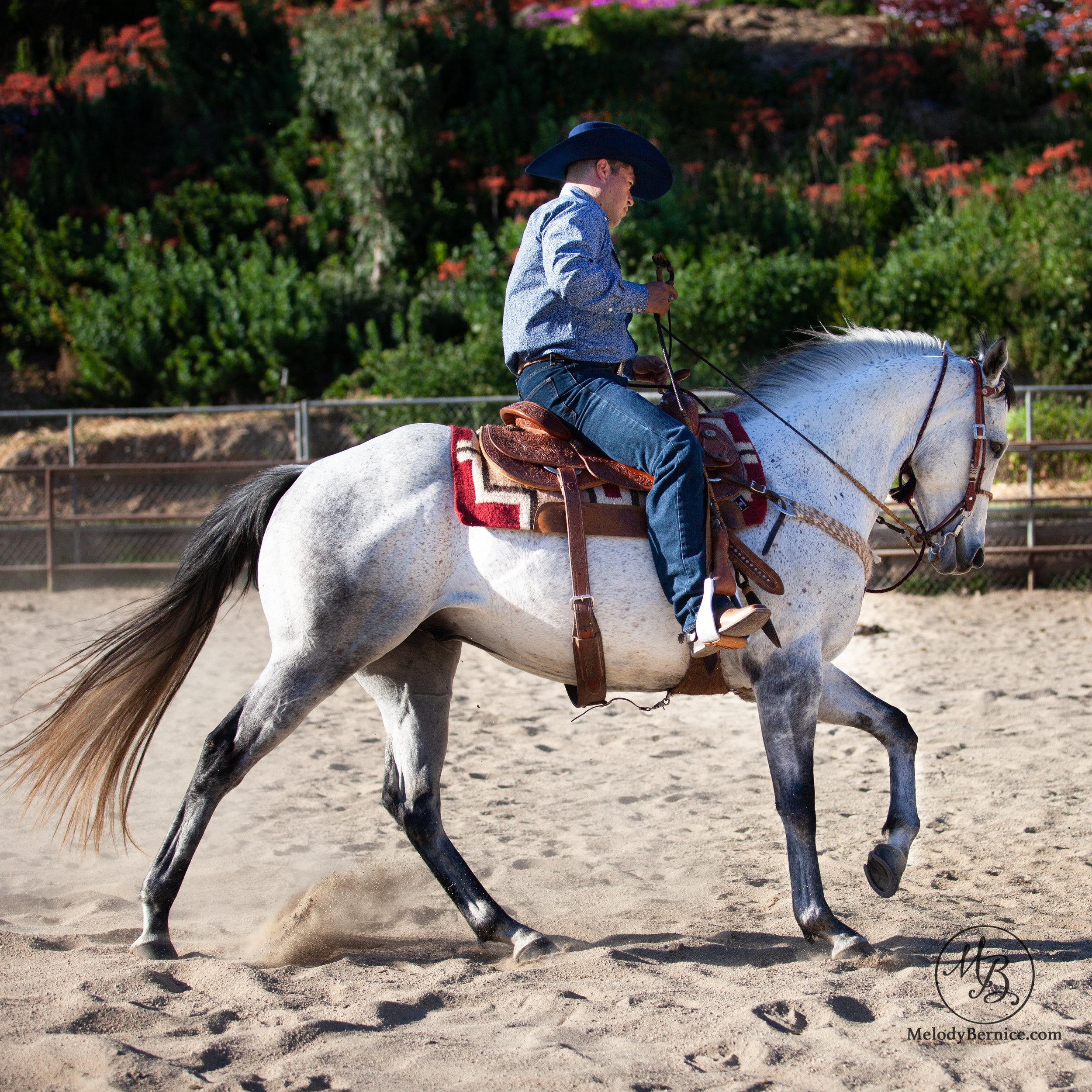 PORTFOLIO Romo riding.jpg