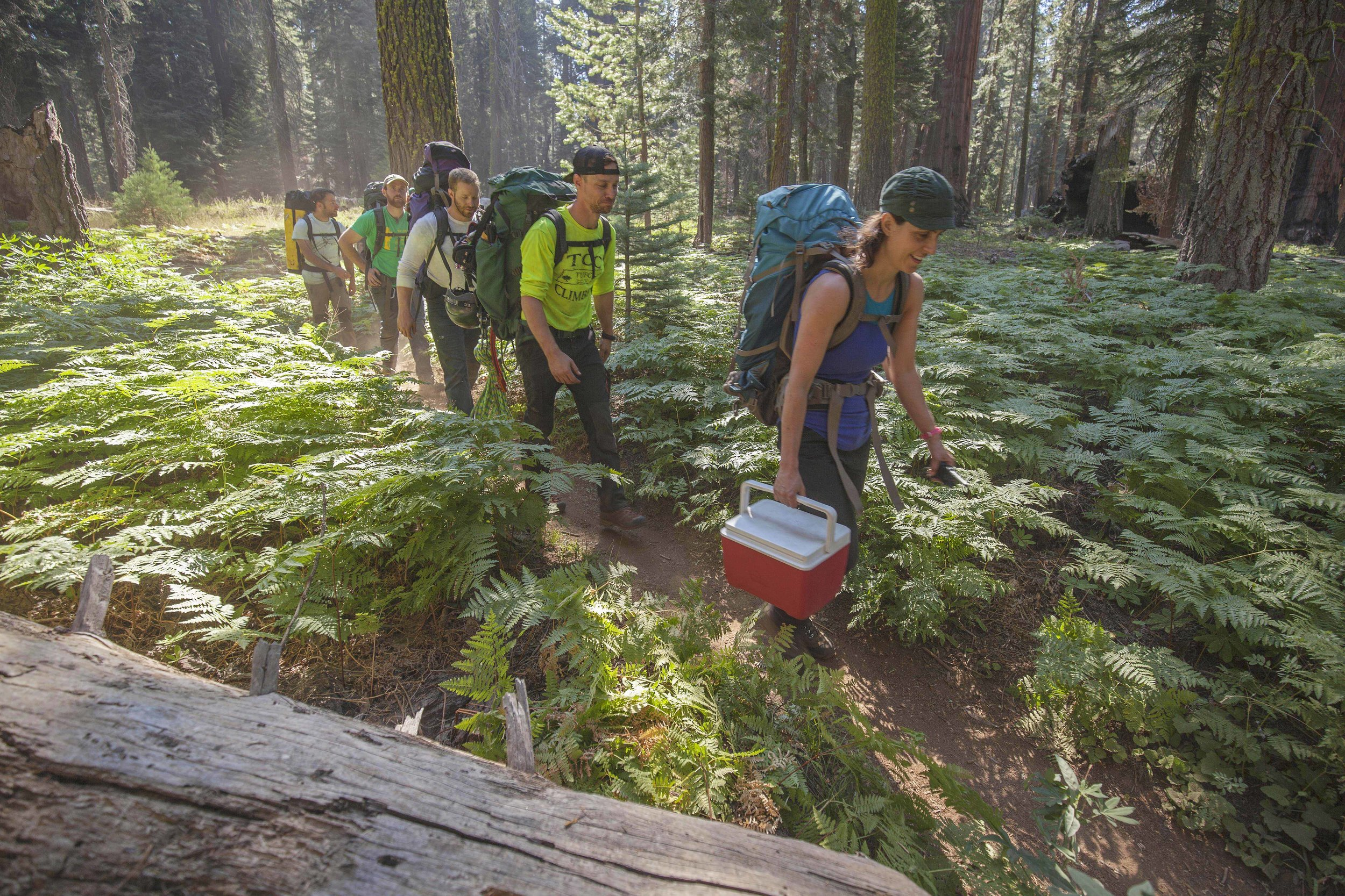 Ambrose_IMG_4238_Crew hiking_low res.jpg