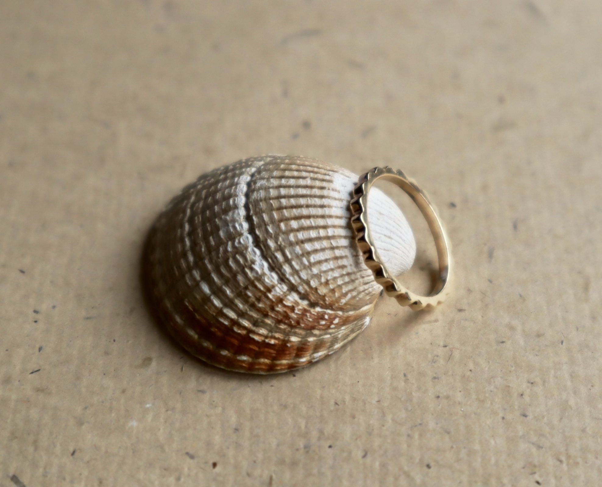 Antonia - 14ct Gold Ring