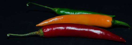 The redder the pepper the more Capsaicin