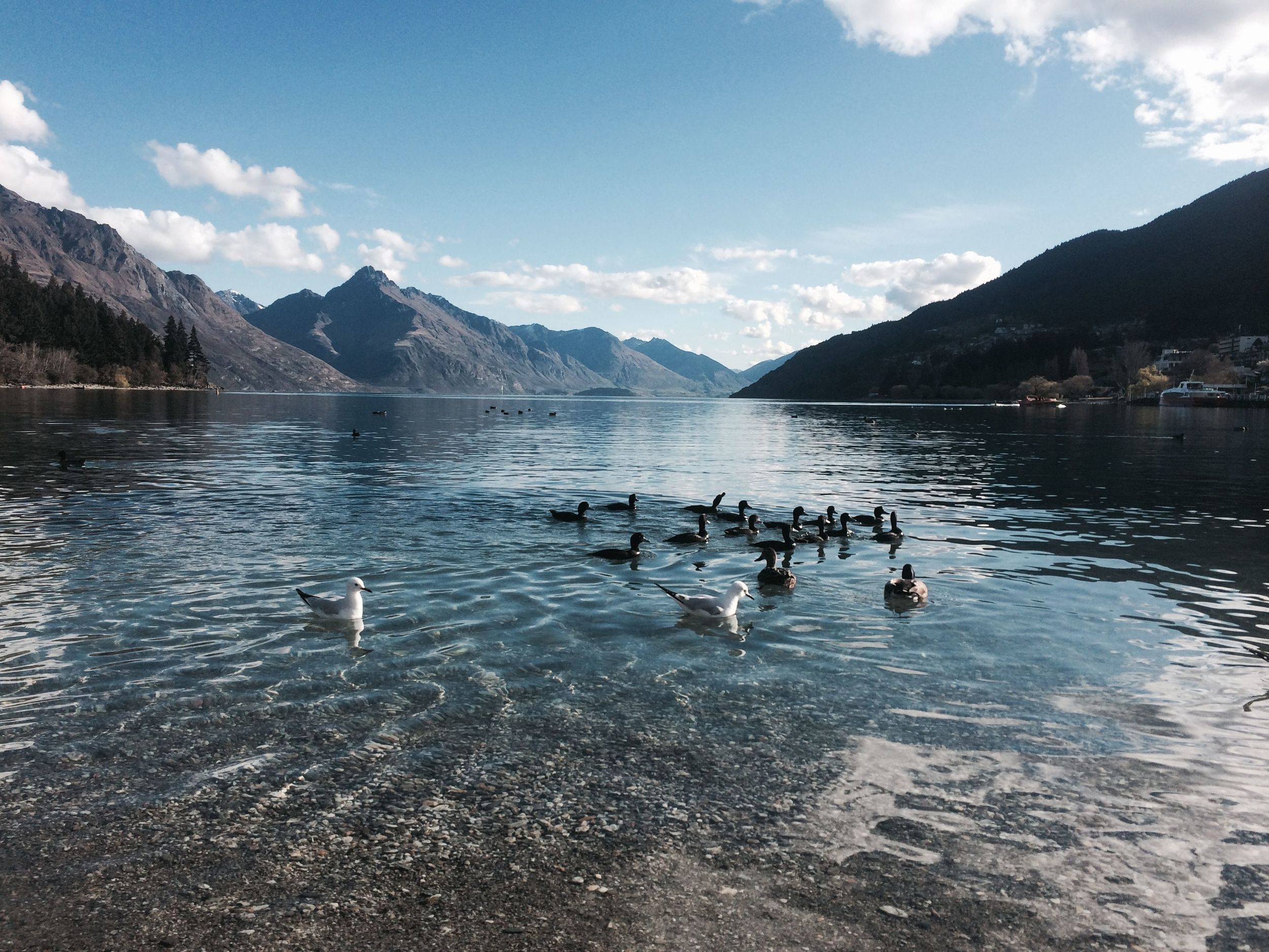 The lake in Queenstown is surrounded by steep mountains. The beach is right on the edge of town and is ringed by swanky pubs and places to eat.