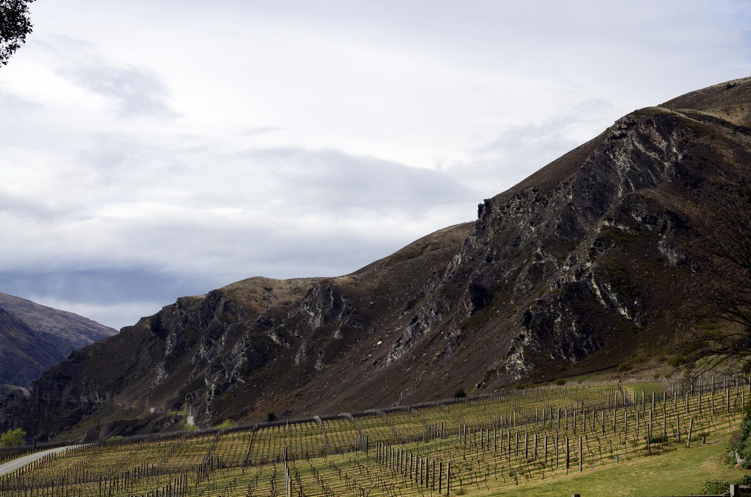 582 Otago Wineries Chard Farm.jpg