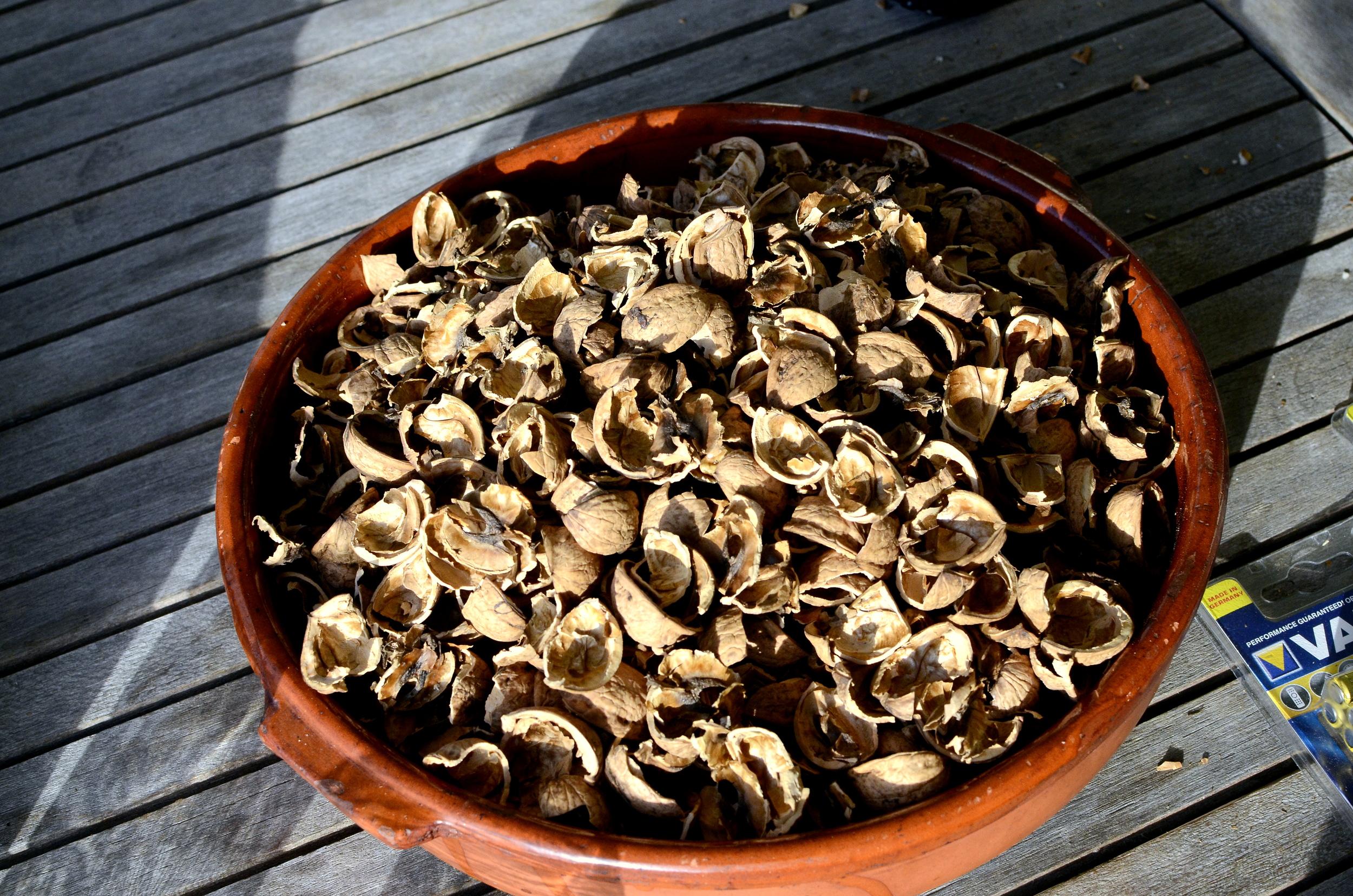583 Aurum Walnuts.jpg
