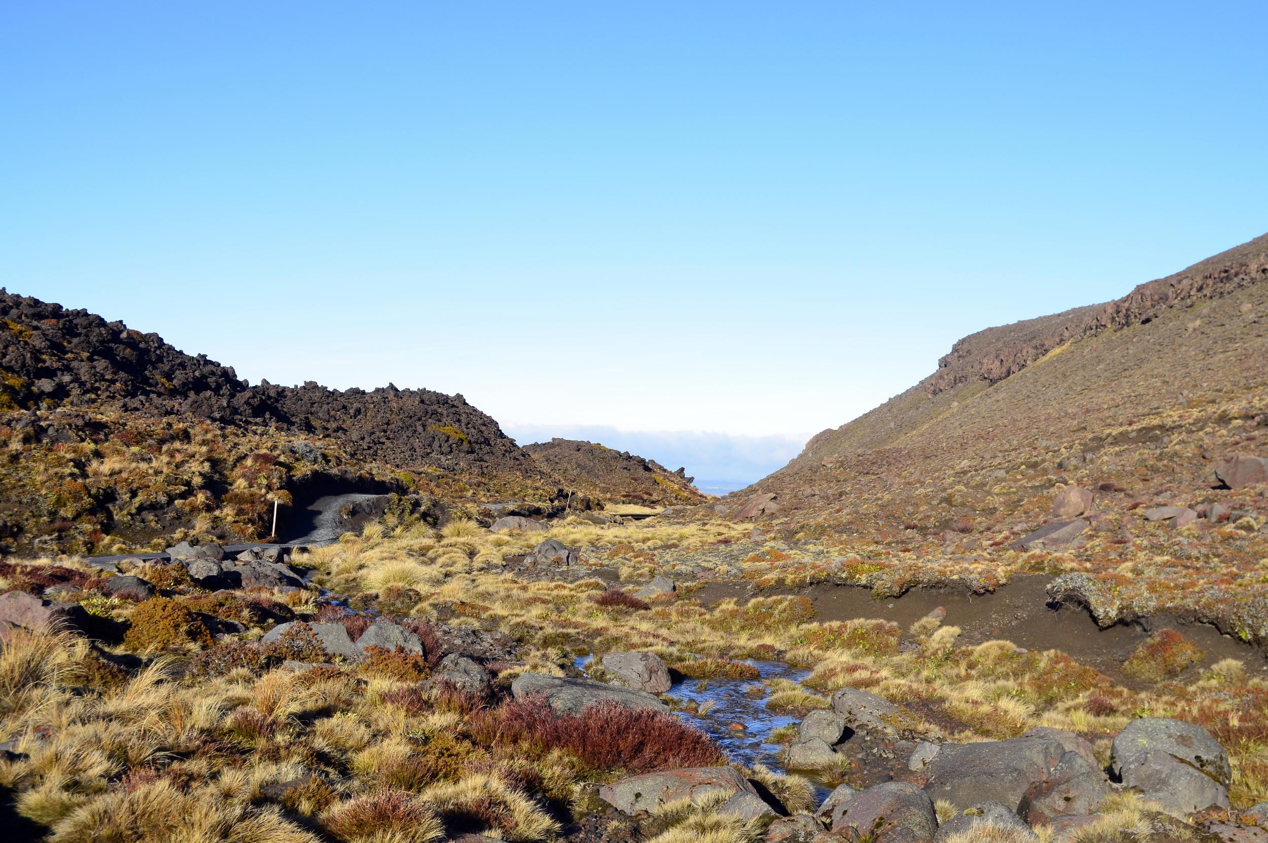 590 Tongariro Descent.jpg
