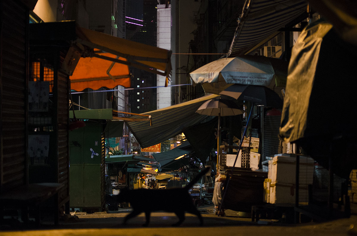 900 HK Cat Alley.jpg